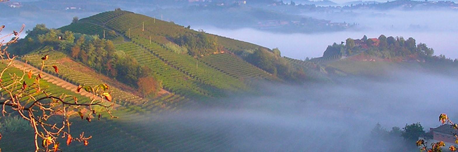 Fabrizio PINSOGLIO, vins du Piémont, Italie